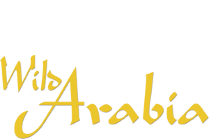 Wild Arabia | Netflix
